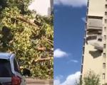 北京狂风袭来大树被连根拔起 楼房墙皮如纸片被吹落砸进幼儿园