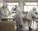 Aha视频 | 这家面包房里 精神病人在工作